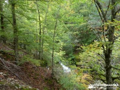 Parque Natural Sierra de Cebollera (Los Cameros) - Acebal Garagüeta;club de ocio y amistad revistas